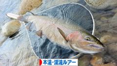 にほんブログ村 釣りブログ 本流・渓流ルアーフィッシングへ