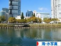 にほんブログ村 写真ブログ 海・水写真へ