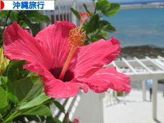 にほんブログ村 旅行ブログ 沖縄旅行へ