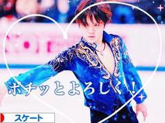 にほんブログ村 その他スポーツブログ スケート・フィギュアスケート