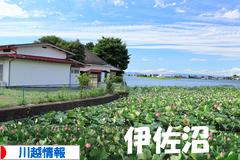 にほんブログ村 地域生活(街) 関東ブログ 川越情報へ