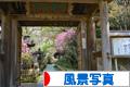 にほんブログ村 写真ブログ 風景写真へ