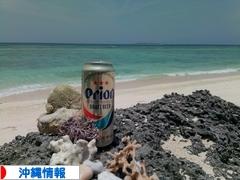 にほんブログ村 地域生活(街) 沖縄ブログ 沖縄県情報へ