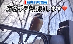 にほんブログ村 地域生活(街) 中部ブログ 北佐久郡軽井沢町情報へ