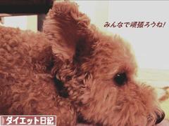 にほんブログ村 ダイエットブログ ダイエット日記