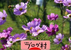 にほんブログ村 地域生活(街) 東北ブログ 秋田県情報へ