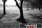 にほんブログ村 写真ブログ デジタル一眼(FUJIFILM)へ