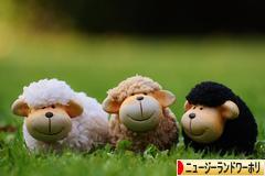 にほんブログ村 海外生活ブログ ワーホリ(ニュージーランド)